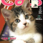 cats200602