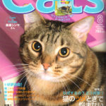 cats200608
