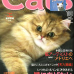 cats200610